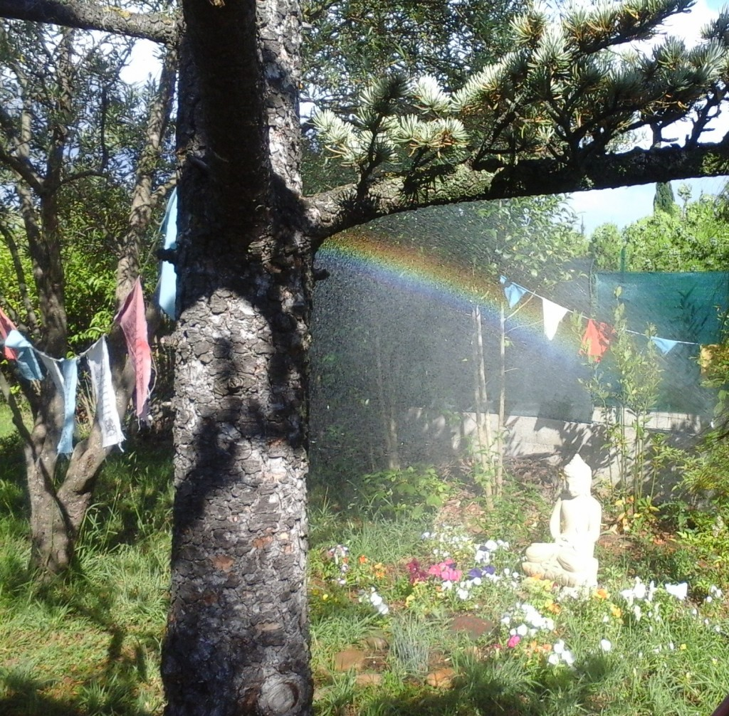 jardin-matelles